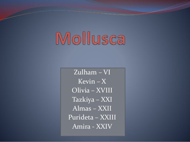 Zulham – VI Kevin – X Olivia – XVIII Tazkiya – XXI Almas – XXII Purideta – XXIII Amira - XXIV