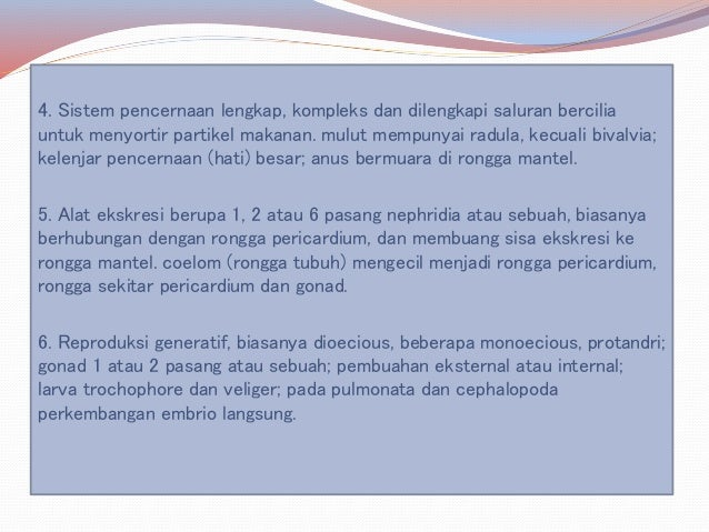 [Indonesia]Mollusca Slide 3