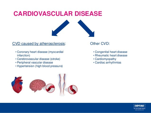 cardiovascular disease atherosclerosis and hypertension Hypertensive heart disease includes a number of complications of since high blood pressure is a risk factor for atherosclerosis and ischemic heart disease.
