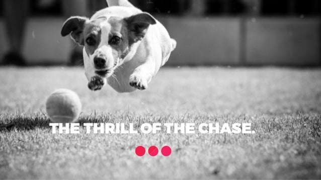 THE THRILL OF THE CHASE.