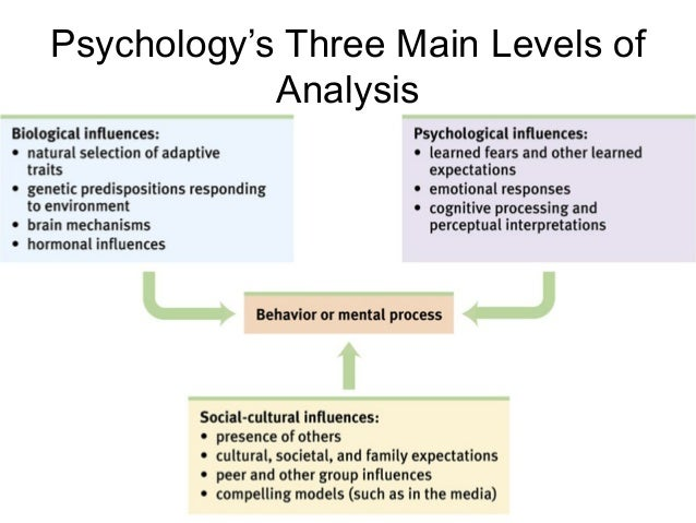 level of analysis in international relations pdf