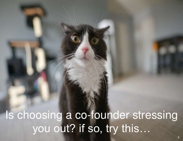 Is choosing a co-founder stressing you out? if so, try this… 2