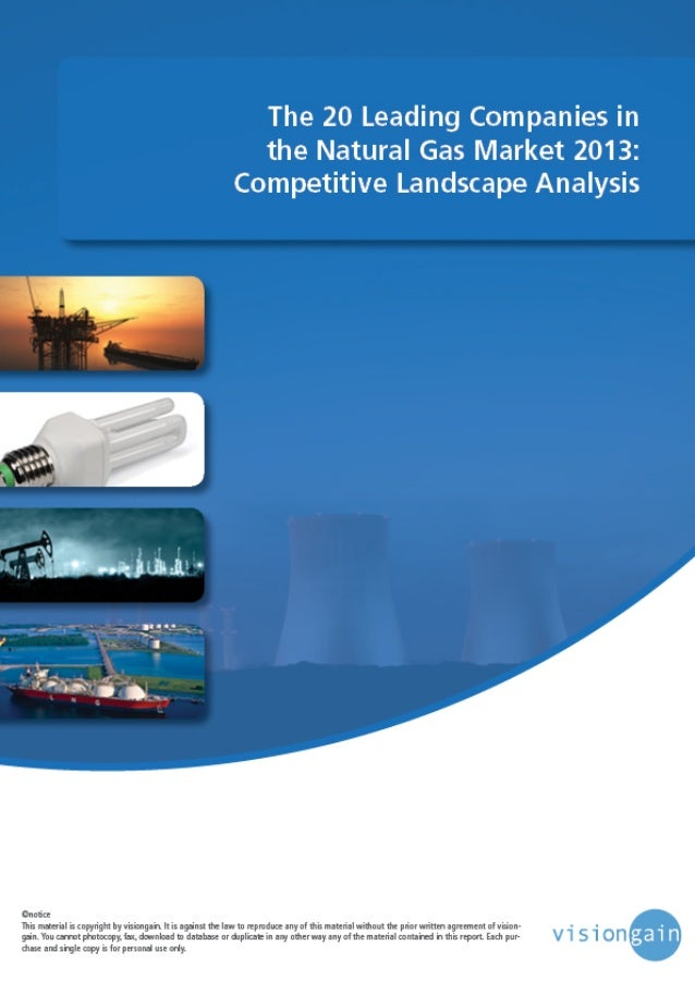 www.visiongain.com Contents 1. Executive Summary 1.1 Global Natural Gas Market Overview 1.2 Highlights of this Report 1.3 ...
