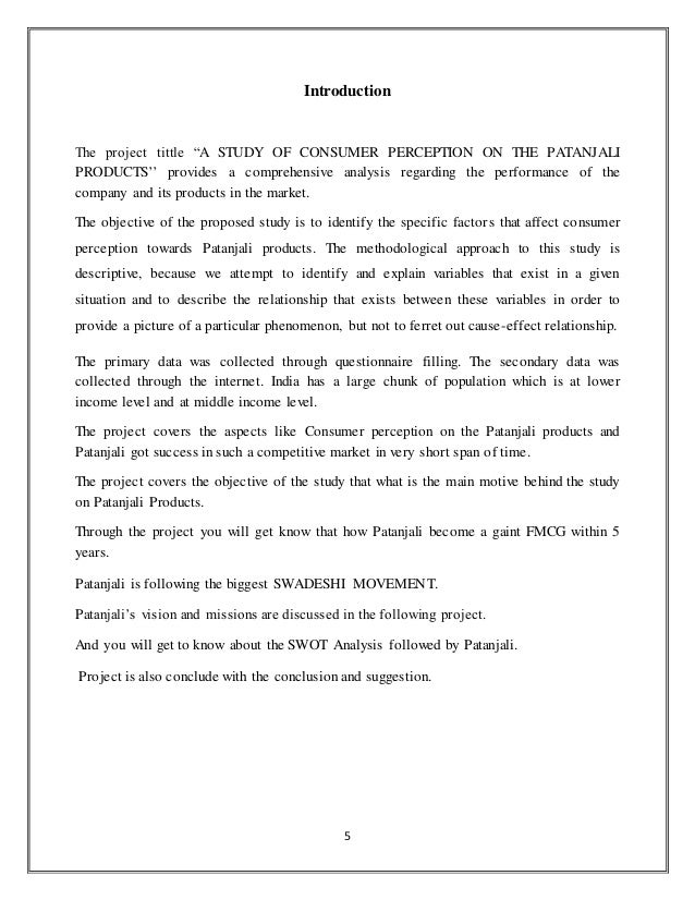 Pdf File Project Report On Patanjali