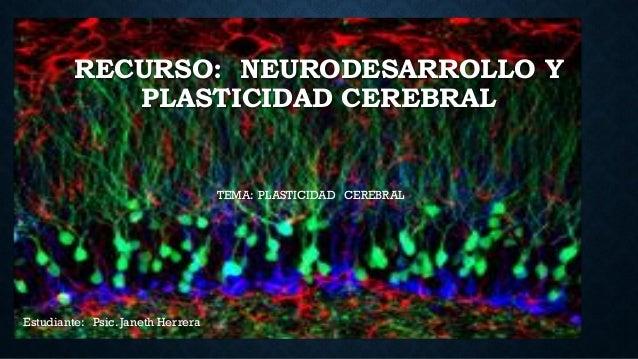 RECURSO: NEURODESARROLLO Y PLASTICIDAD CEREBRAL TEMA: PLASTICIDAD CEREBRAL Estudiante: Psic. Janeth Herrera