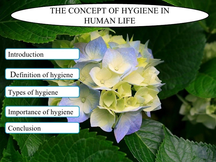 THE CONCEPT OF HYGIENE IN HUMAN LIFE Introduction D efinition of hygiene Types of hygiene Importance of hygiene Conclusion