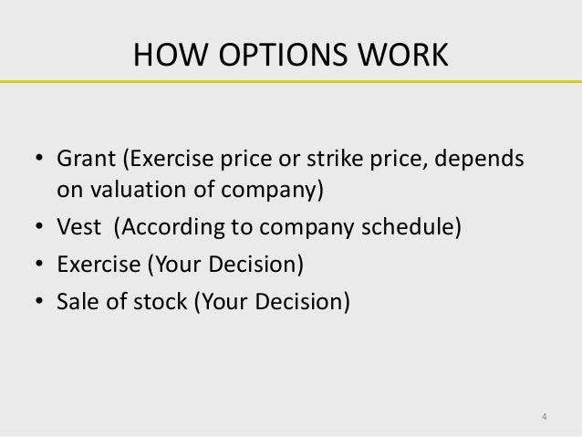 Stock options grant vest and exercise