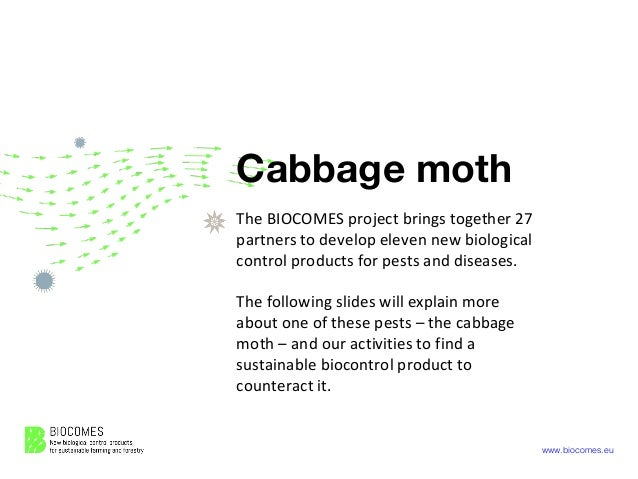 www.biocomes.eu Cabbage moth The BIOCOMES project brings together 27 partners to develop eleven new biological control pro...
