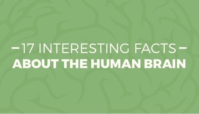 17 INTERESTING FACTS ABOUT THE HUMAN BRAIN