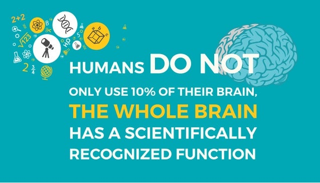 Infographic: 17 Interesting Facts About the Human Brain