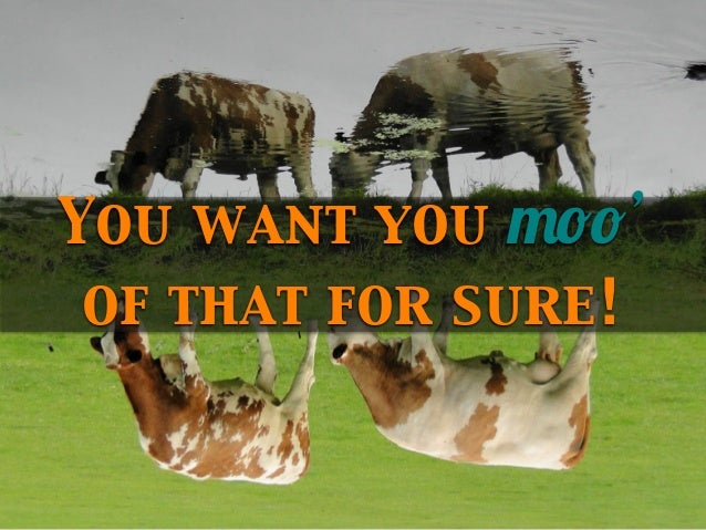 You want you moo' of that for sure!