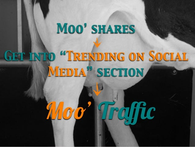 """Moo' shares Get into """"Trending on Social Media"""" section  Moo' Traffic"""