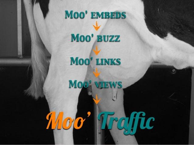 Moo' embeds Moo' buzz Moo' links Moo' views  Moo' Traffic