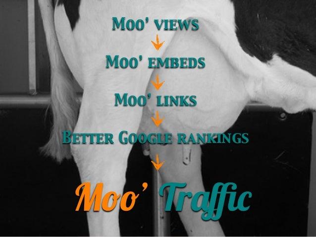 Moo' views Moo' embeds Moo' links Better Google rankings  Moo' Traffic