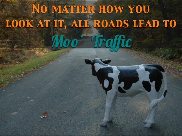 No matter how you look at it, all roads lead to  Moo' Traffic