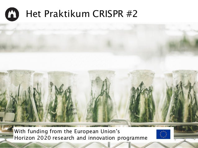 Het Praktikum CRISPR #2 With funding from the European Union's Horizon 2020 research and innovation programme