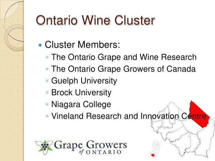 Wine Cluster Slide 3