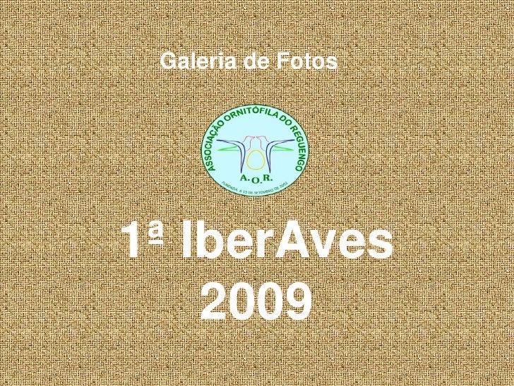Galeria de Fotos<br />1ª IberAves 2009<br />