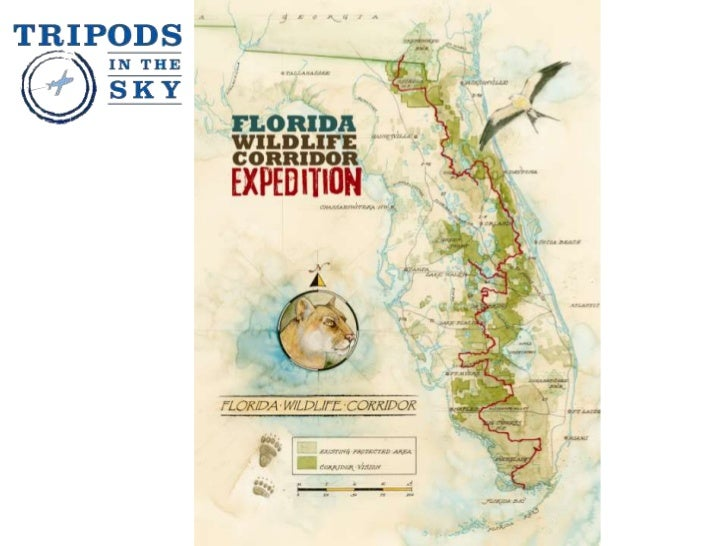 A collaborationbetween iLCPphotographerCarlton Ward Jr.and LightHawkPhotos: Aerial andland photographsof the FloridaWildli...