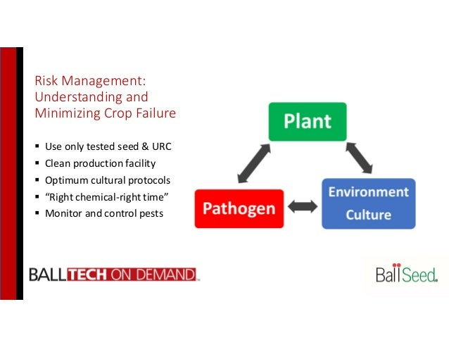 Risk Management: Understanding and Minimizing Crop Failure  Use only tested seed & URC  Clean production facility  Opti...