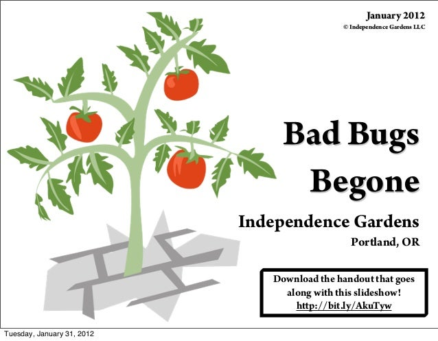 Bad Bugs Begone Independence Gardens Portland, OR January 2012 © Independence Gardens LLC Download the handout that goes a...