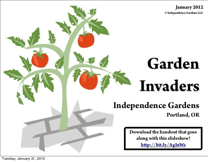 January 2012                                              © Independence Gardens LLC                                    Ga...