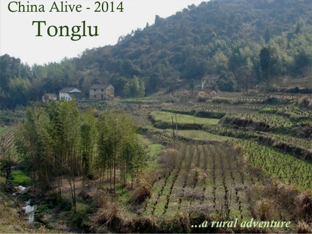 Tonglu Tonglu  China Alive - 2014  ...a rural adventure