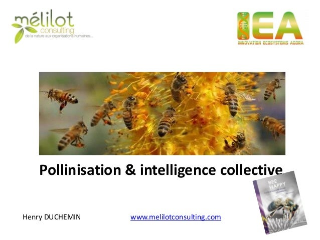 Pollinisation & intelligence collective  Henry DUCHEMIN  www.melilotconsulting.com