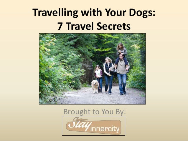 Travelling with Your Dogs: 7 Travel Secrets Brought to You By: