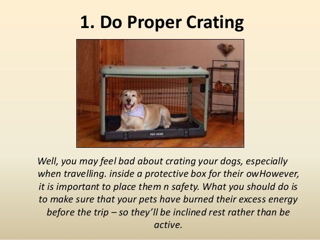 1. Do Proper Crating Well, you may feel bad about crating your dogs, especially when travelling. inside a protective box f...