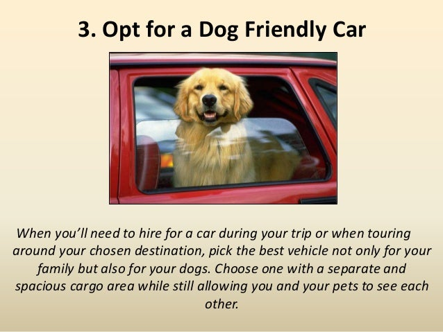 3. Opt for a Dog Friendly Car When you'll need to hire for a car during your trip or when touring around your chosen desti...