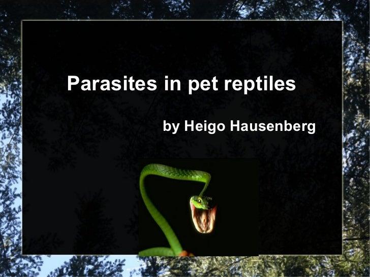 Parasites in pet reptiles by Heigo Hausenberg
