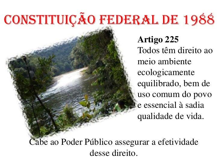 slides leis ambientaisconstituiÇÃo federal de 1988 artigo 225