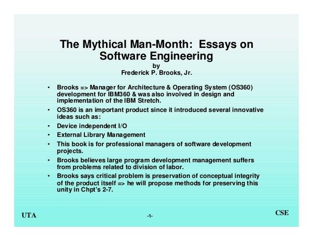 Software engineering essay