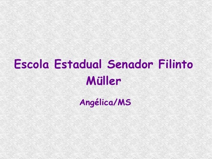 Escola Estadual Senador Filinto Müller Angélica/MS