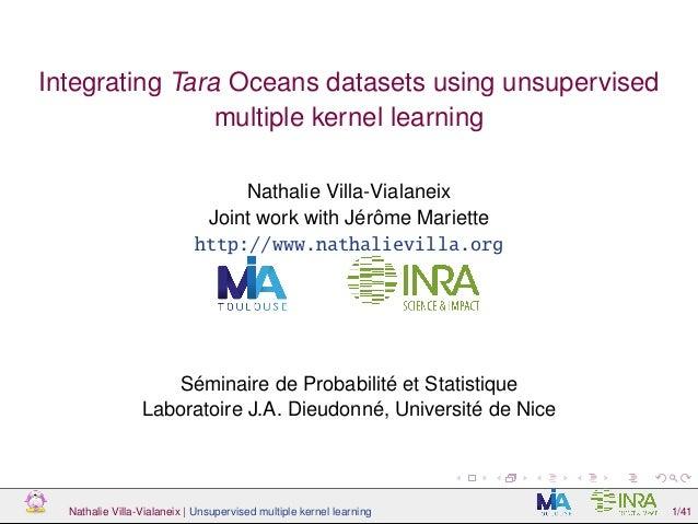 Integrating Tara Oceans datasets using unsupervised multiple kernel learning Nathalie Villa-Vialaneix Joint work with Jérô...
