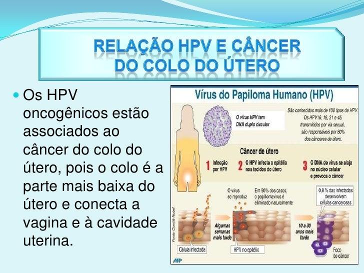 Fatores de Risco<br />Os fatores de risco para a incidência do câncer do colo do útero são, as baixas condições sócio-econ...