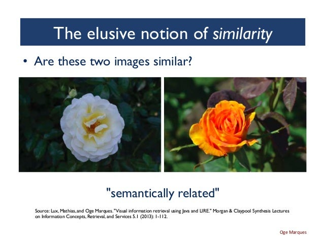 Visual Information Retrieval: Advances, Challenges and Opportunities