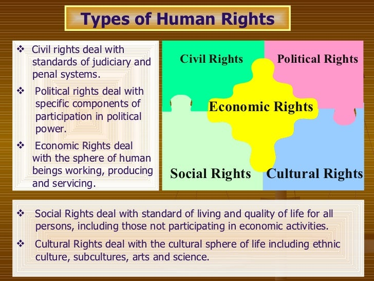 right to education political social