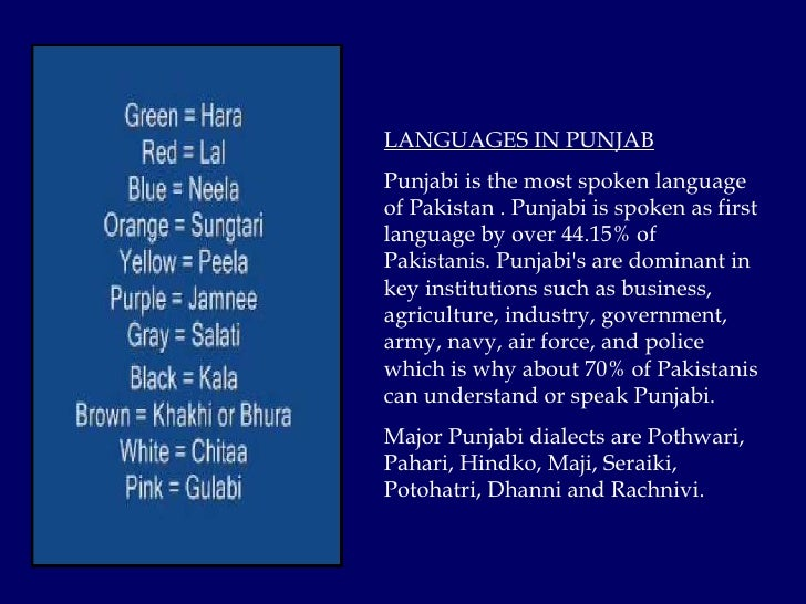 5 LANGUAGES IN PUNJAB Punjabi
