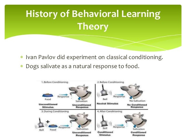The pavlovian learning model