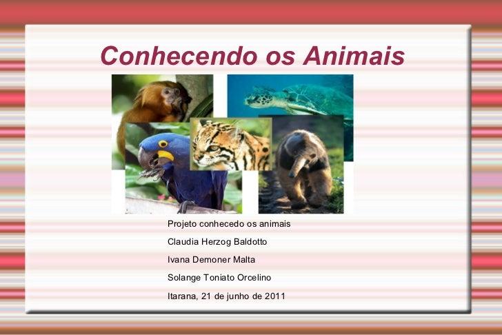 Conhecendo os Animais Projeto conhecedo os animais Claudia Herzog Baldotto Ivana Demoner Malta Solange Toniato Orcelino It...