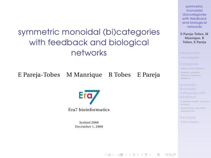 symmetric                                                  monoidal                                               (bi)cate...
