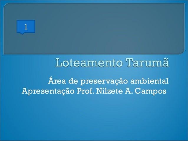 1  Área de preservação ambiental Apresentação Prof. Nilzete A. Campos