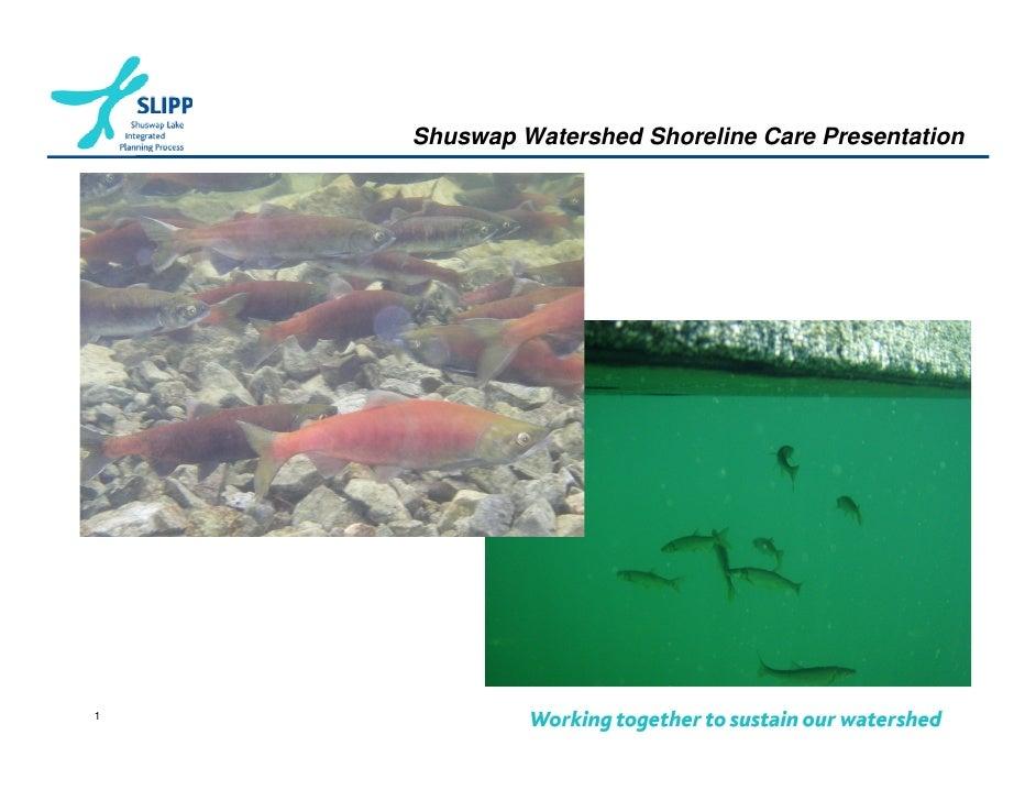 Shuswap Watershed Shoreline Care Presentation1