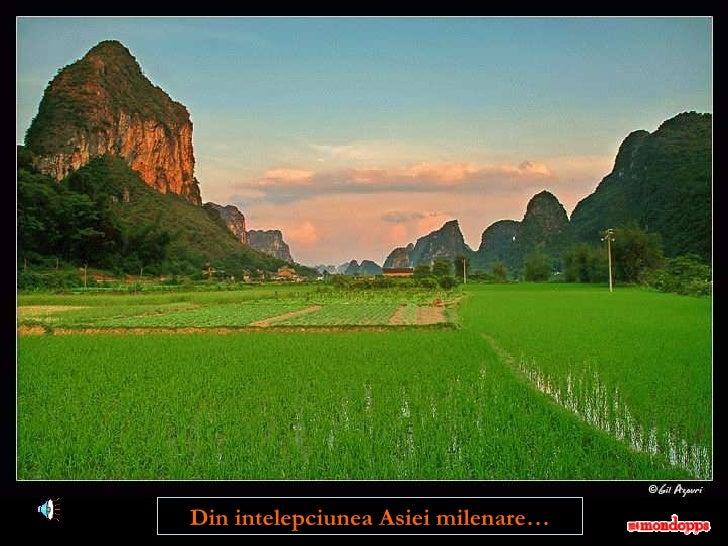 Din intelepciunea Asiei milenare…
