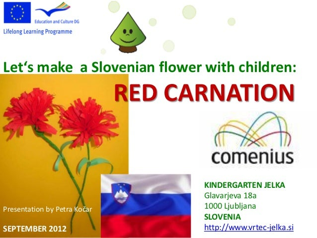 Let's make a Slovenian flower with children:                              RED CARNATION                                   ...
