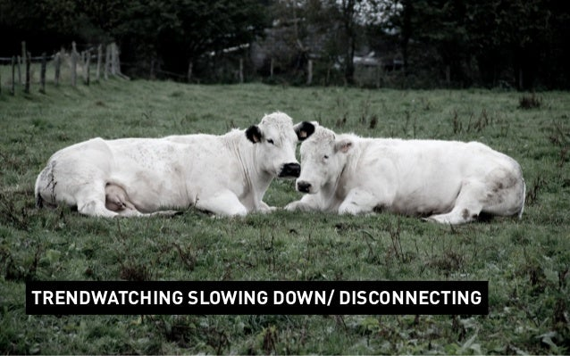 TRENDWATCHING SLOWING DOWN/ DISCONNECTING