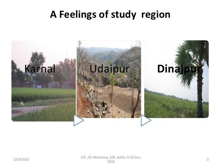 A Feelings of study  region <br />12/9/2010<br />SLP_CR Workshop, ILRI, Addis, 9-10 Dec, 2010<br />3<br />