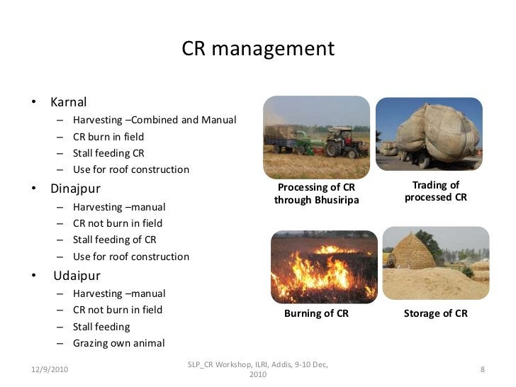 CR management<br />Karnal<br />Harvesting –Combined and Manual<br />CR burn in field<br />Stall feeding CR<br />Use for ro...